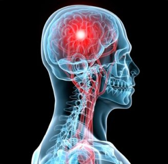 Aprendamos todo sobre las Funciones del sistema nervioso.