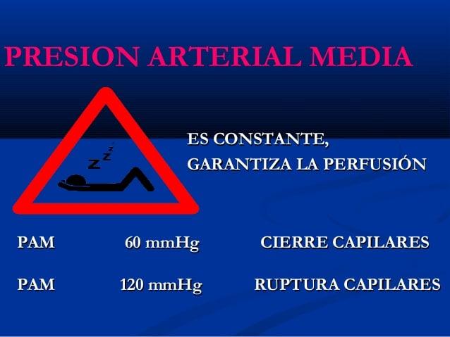 Tipos de Presión Arterial