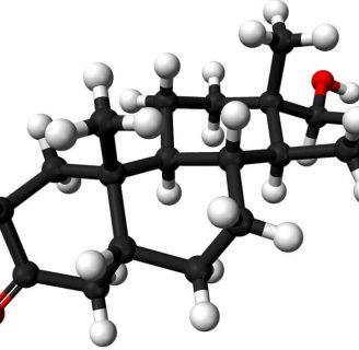 Aprendamos sobre las hormonasACTH y mucho más