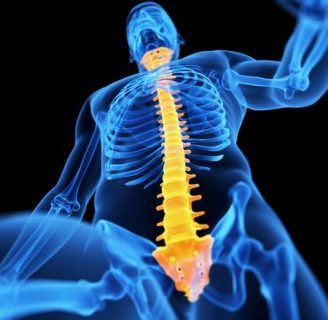 Huesos de la Columna Vertebral: Anatomía, función, tipos y más