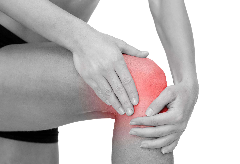 Huesos de la Rodilla: ¿Cómo son? Anatomía, Dolor, Lesiones ...