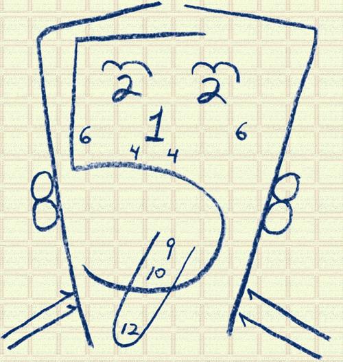 Nervios craneales ubicación