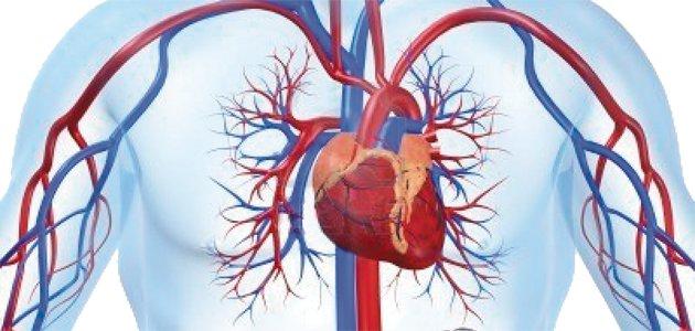 circulación pulmonar