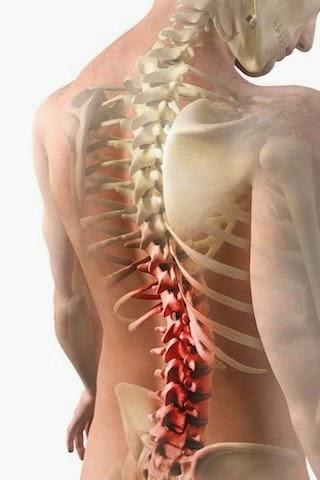 enfermedades de la médula espinal