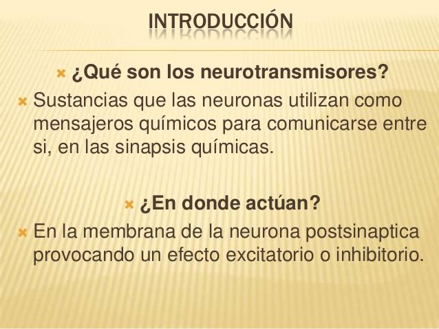ver-Sistema Nervioso Central-35