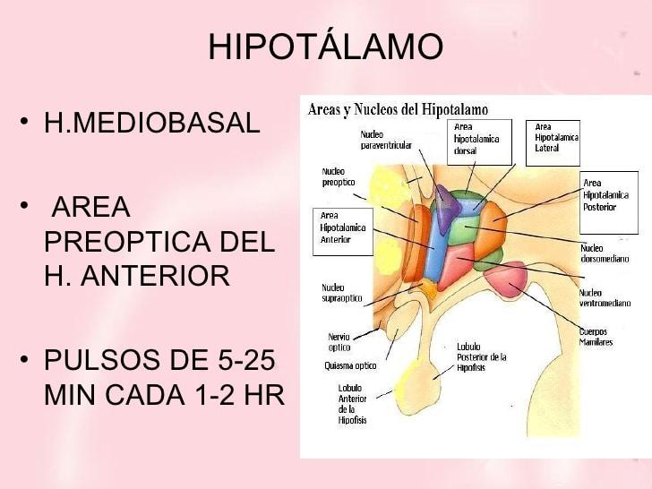 Hormonasgnrh