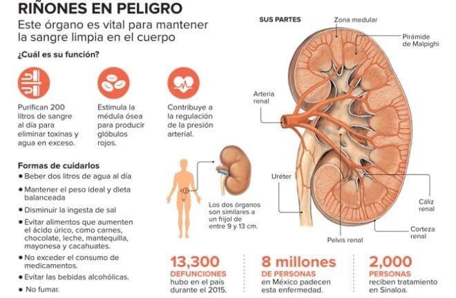Enfermedades-del-riñón