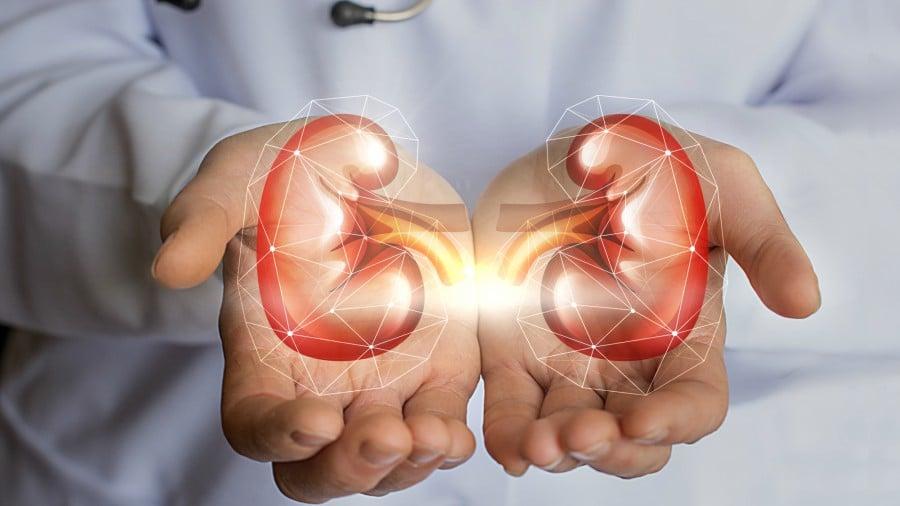 riñones inflamados