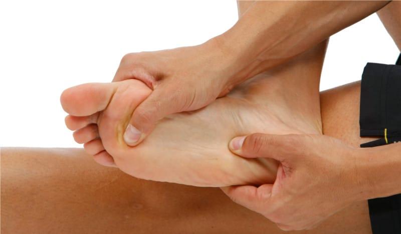 musculos de pie