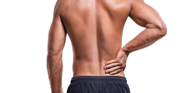 Músculos de la Espalda: Definición, anatomía, funciones..