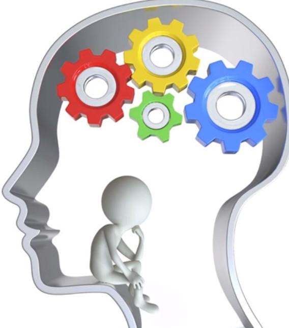 Cosas que necesitas saber sobre tu cerebro