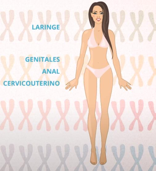 genotipos VPH